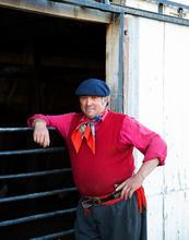 Chile, gauchos, cowboy, chile, patagonia, rural, authentic