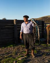 Chile, gauchos, cowboy, chile, patagonia, rural, authentic