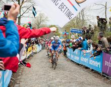 France, cycling, professional, sports, bicycle, road, race, fitness, cobblestone,