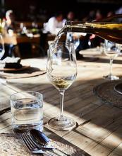 Mexico, Valle de Guadalupe, wine, baja, valle de guadalupe, fauna, restaurant