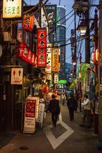 1575821502470_Tokyo_by_Peter_Zullo01