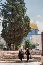 1580586495036_domeoftherockmuslimquarterJerusalem